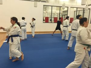 jujitsu-forumspace